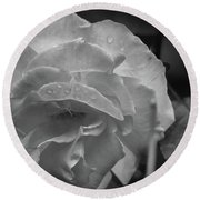 Rose In Black And White Round Beach Towel by Kelly Hazel