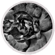 Rose In Black And White Round Beach Towel