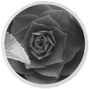 Rose In Black Round Beach Towel