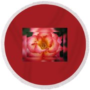 Rose In Reflection Round Beach Towel