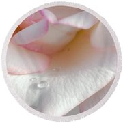 Rose In The Morning Sun Round Beach Towel