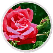 Rose Is Its Name Round Beach Towel