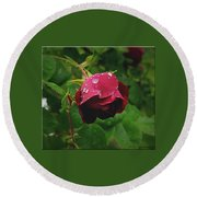 Rose On The Vine Round Beach Towel