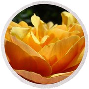 Rose Sunlit Orange Rose Garden 7 Rose Giclee Art Prints Baslee Troutman Round Beach Towel