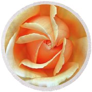 Rose Unfolding Round Beach Towel