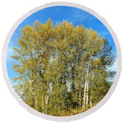 Rosehips And Cottonwoods Round Beach Towel