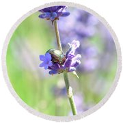 Rosemary And Lavender Round Beach Towel