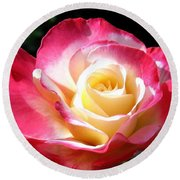 Roses 7 Round Beach Towel