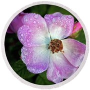 Roses After The Rain Round Beach Towel