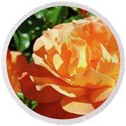 Roses Art Prints Orange Rose Flower 11 Giclee Prints Baslee Troutman Round Beach Towel