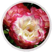 Roses Art Prints Pink White Rose Flowers Gifts Baslee Troutman Round Beach Towel