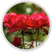 Roses On A Sunny Day Round Beach Towel
