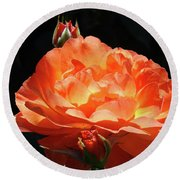 Roses Orange Rose Flowers Rose Garden Art Baslee Troutman Round Beach Towel