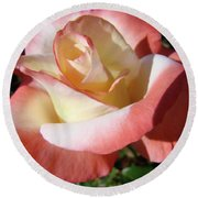 Roses Pink Creamy White Rose Garden 5 Fine Art Prints Baslee Troutman Round Beach Towel