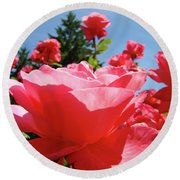 Roses Pink Rose Landscape Summer Blue Sky Art Prints Baslee Troutman Round Beach Towel