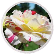 Roses White Pink Yellow Rose Flowers 3 Rose Garden Art Baslee Troutman Round Beach Towel