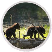 Rosie And Cubs Round Beach Towel