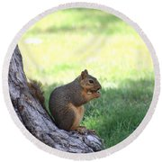 Roswell Squirrel Round Beach Towel