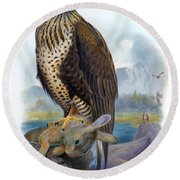 Rough Legged Buzzard Hawk Antique Bird Print The Birds Of Great Britain Round Beach Towel
