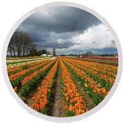 Rows Of Colorful Tulips At Festival Round Beach Towel