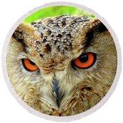 Royal Owl Round Beach Towel