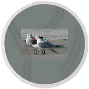 Royal Terns And Gulls Round Beach Towel