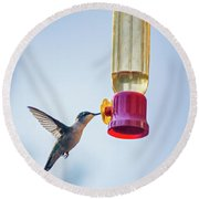Ruby-throated Hummingbird 4 Round Beach Towel