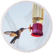Ruby-throated Hummingbird 5 Round Beach Towel