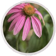 Rudbeckia Morning Round Beach Towel