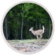Running Deer Round Beach Towel