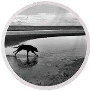 Running Dog Bw Round Beach Towel