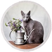 Russian Blue 02 Round Beach Towel