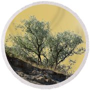Russian Olive Round Beach Towel