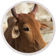 Sacred Cow Round Beach Towel