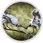 Sacred Ibis Photobombing Round Beach Towel