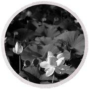 Sacred Lotus #2.    Black And White Round Beach Towel