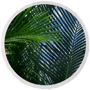 Sago Palm Fronds Round Beach Towel