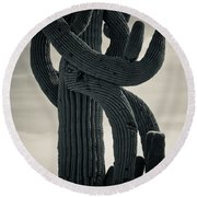 Saguaro Cactus Armed And Twisted Round Beach Towel