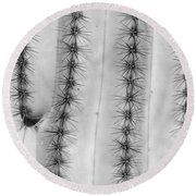 Saguaro Cactus Close-up  Bw Round Beach Towel