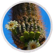 Saguaro Elephant Trunk Round Beach Towel