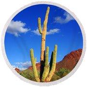 Saguaro Np Round Beach Towel