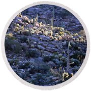Saguaro Sunrise Round Beach Towel