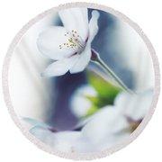 Sakura Cherry Blossom Flowers Round Beach Towel