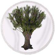 Salix Viminalis Tree Round Beach Towel
