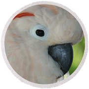 Salmon Crested Moluccan Cockatoo Round Beach Towel