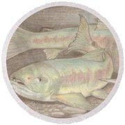 Salmon Spawn Round Beach Towel
