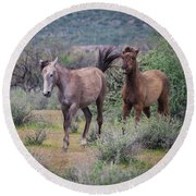 Salt River Wild Horses-img_747217 Round Beach Towel