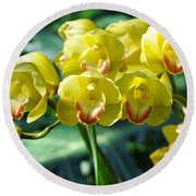 San Diego Yellow Orchids Round Beach Towel
