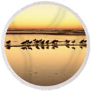 San Diego Shorebirds Round Beach Towel