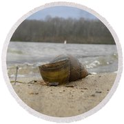 Sand And Shell Round Beach Towel
